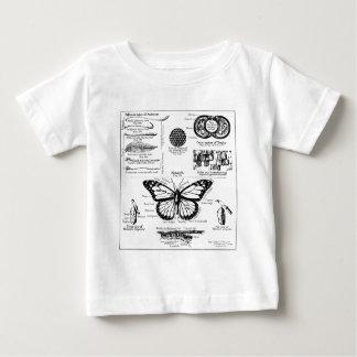 Monarch Butterfly Information Shirt