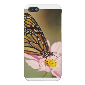 Monarch Butterfly Covers For iPhone 5