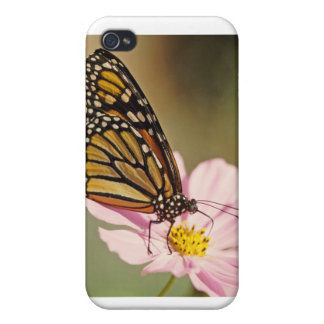 Monarch Butterfly iPhone 4 Cover
