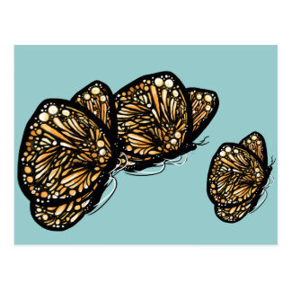Monarch Butterfly , Just Landed Postcard