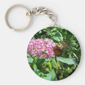 monarch butterfly key chains