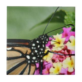 Monarch Butterfly, Lantana Flowers.Ceramic Tile