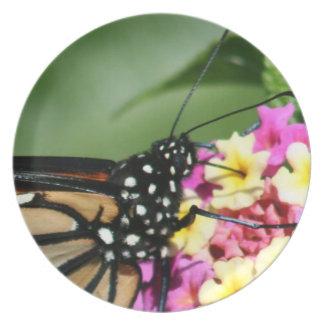 Monarch Butterfly, Lantana Flowers.Plate Plate