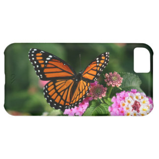 Monarch Butterfly Lantana iPhone 5C Case