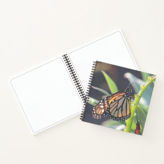 Monarch Butterfly Large Spiral Notebook