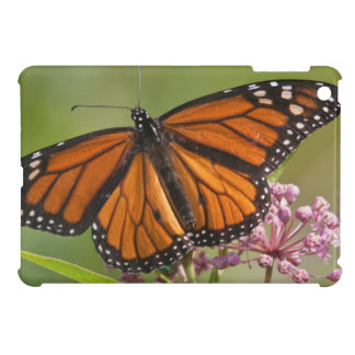 Monarch Butterfly male on Swamp Milkweed Cover For The iPad Mini