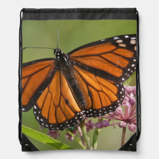 Monarch Butterfly male on Swamp Milkweed Drawstring Bag