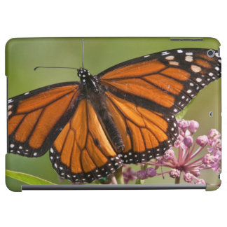 Monarch Butterfly male on Swamp Milkweed iPad Air Covers