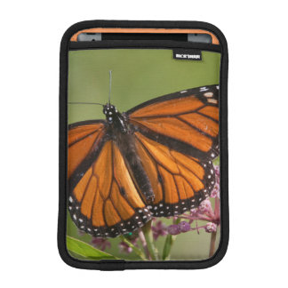 Monarch Butterfly male on Swamp Milkweed Sleeve For iPad Mini