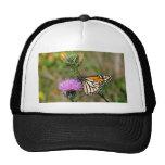 Monarch Butterfly Mesh Hats