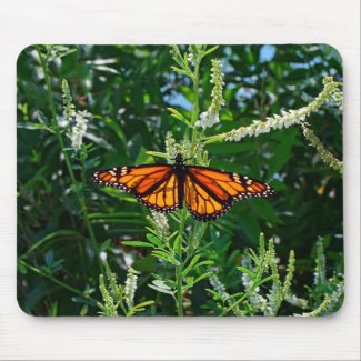 Monarch Butterfly Natural Mousepad