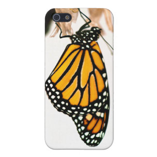Monarch Butterfly Newborn Photograph iPhone SE/5/5s Cover