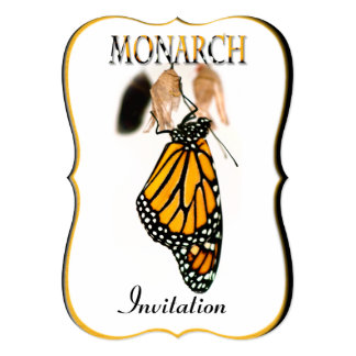 "Monarch Butterfly Newborn with Cocoon - Photograph 5"" X 7"" Invitation Card"
