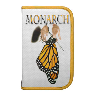 Monarch Butterfly Newborn with Cocoon - Typography Organizers
