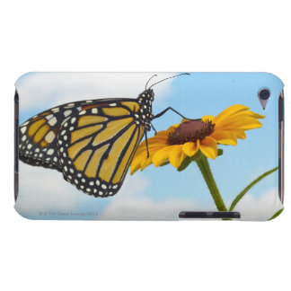 Monarch Butterfly on a Black Eyed Susan Barely There iPod Case