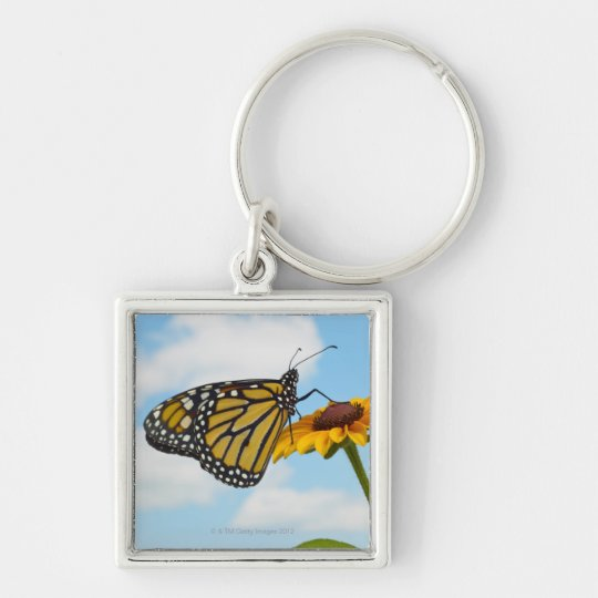 Monarch Butterfly on a Black Eyed Susan Keychain
