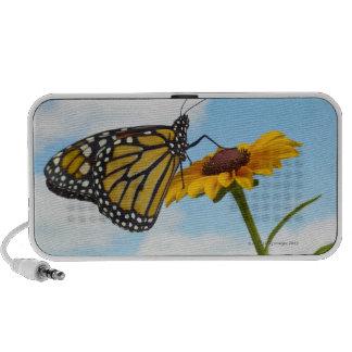 Monarch Butterfly on a Black Eyed Susan Notebook Speaker