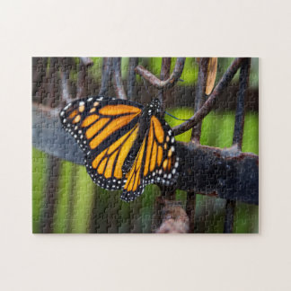 Monarch Butterfly on a Cage Puzzle