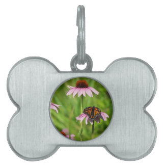 Monarch butterfly on a purple coneflower pet ID tag
