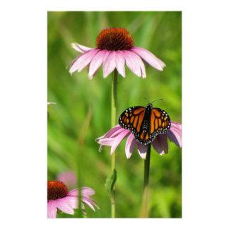 Monarch butterfly on a purple coneflower stationery