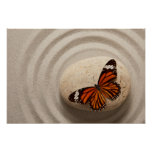 Monarch Butterfly on a Stone in a Zen Garden Poster