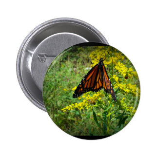 Monarch Butterfly on a Yellow Flower Pin