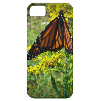 Monarch Butterfly on a Yellow Flower iPhone 5 Cover