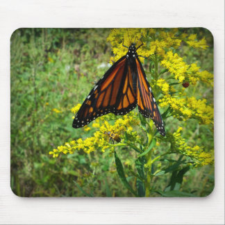 Monarch Butterfly on a Yellow Flower Mousepads
