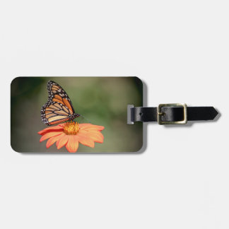 Monarch Butterfly on an orange flower Bag Tag