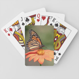 Monarch Butterfly on an orange flower Playing Cards