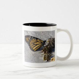 Monarch Butterfly on Beach Seaweed Two-Tone Coffee Mug