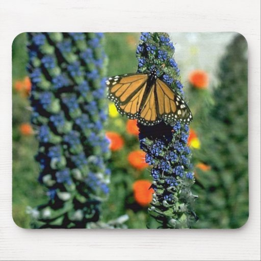 Monarch Butterfly on Blue Flowers Mouse Pad