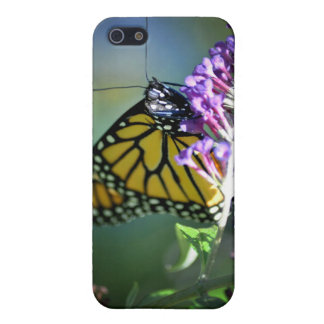 Monarch butterfly on butterfly bush case for iPhone 5