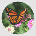 Monarch Butterfly on Lantana Flower Classic Round Sticker