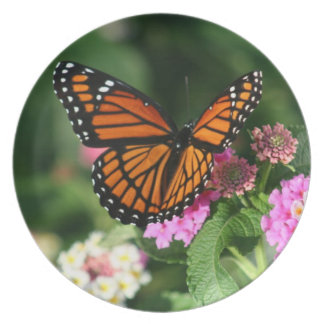 Monarch Butterfly on Lantana Flowers.Plate Plate