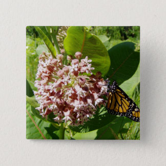 Monarch Butterfly on Milkweed Photo Button