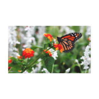 Monarch Butterfly on Orange and Red Lantana Canvas Print