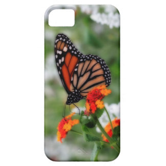 Monarch Butterfly on Orange and Red Lantana iPhone SE/5/5s Case