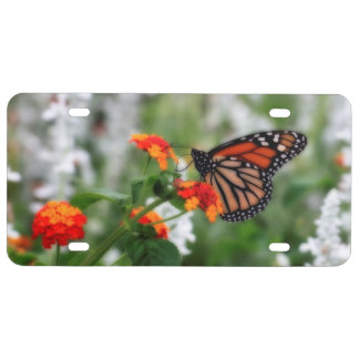 Monarch Butterfly on Orange and Red Lantana License Plate