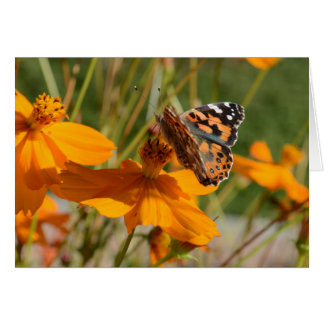Monarch Butterfly on Orange Flower Greeting Card