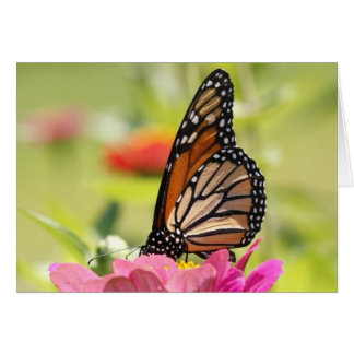 Monarch Butterfly on Pink Flower Card