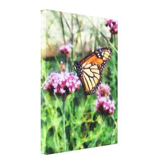 Monarch Butterfly on Pink La Canvas Print