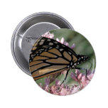 Monarch Butterfly on Pink Pinback Buttons