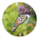 Monarch Butterfly on Purple Butterfly Bush Ceramic Knob