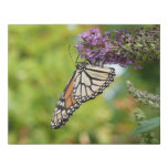 Monarch Butterfly on Purple Butterfly Bush Faux Canvas Print