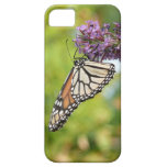 Monarch Butterfly on Purple Butterfly Bush iPhone SE/5/5s Case