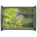 Monarch Butterfly on Purple Butterfly Bush Serving Tray