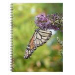 Monarch Butterfly on Purple Butterfly Bush Spiral Notebook