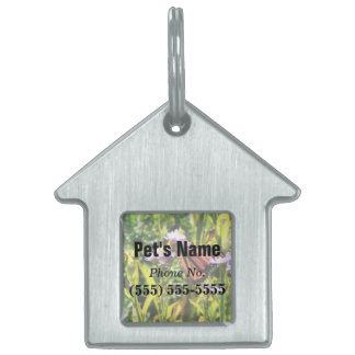 Monarch Butterfly on Purple Wildflower Pet Name Tags