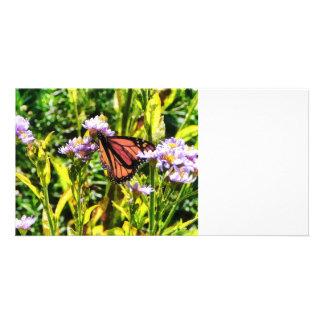 Monarch Butterfly on Purple Wildflower Photo Card